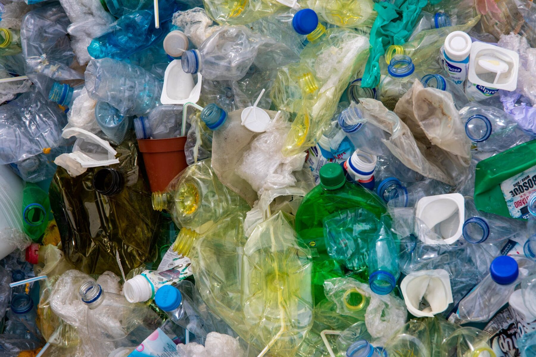 photo of plastic bottles